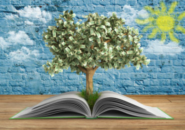 tree growing from book A big open book with tree Reading makes you richer concept 3d render wood and wall with sun